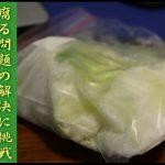 腐る問題の解決に挑戦!白菜を生で冷凍保存してみた