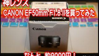 1万円以下!?神レンズ CANON EF50mm F1.8 II レビュー