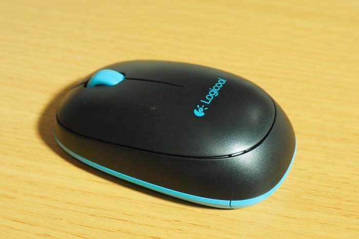 s-P1040099