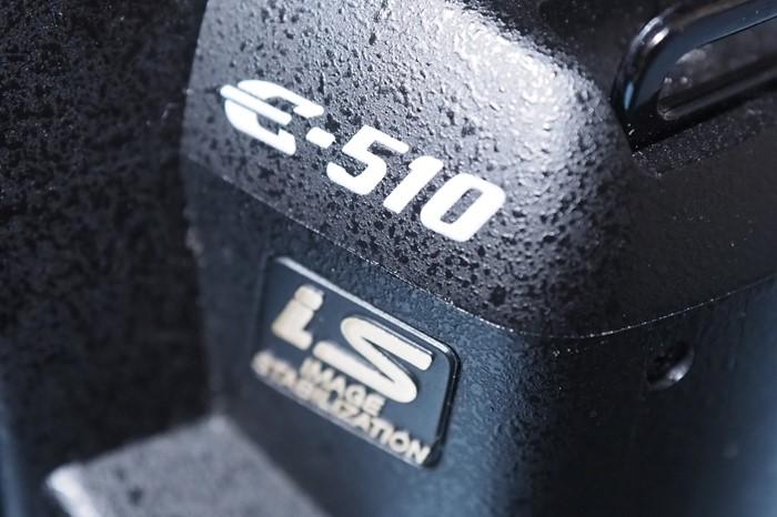 s-P2100001
