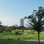 ポケモンGO:ミニリュウの「ポケモンの巣」と噂の前橋公園に行ってみた