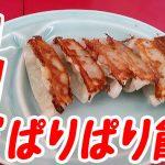 日本一おいしい餃子は山岡家の「特製ギョーザ」だ!