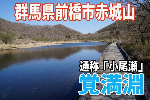 【小尾瀬】群馬県赤城山「覚満淵」に行ってきたぞ!季節外れだったけど